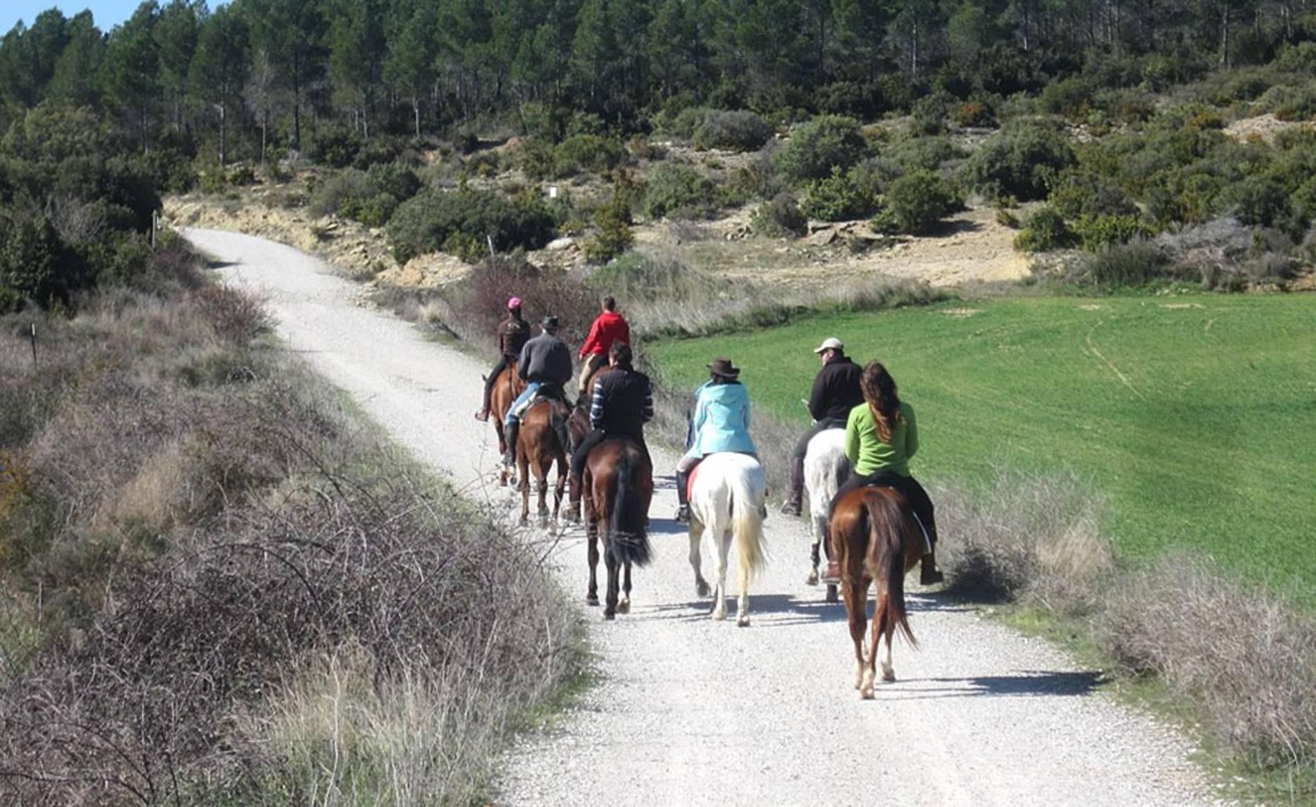 Fotos de los lectores de las Javieradas 2014 (1/31) - Imágenes enviadas por los lectores de Diario de Navarra de las Javieradas 2014. - Navarra -