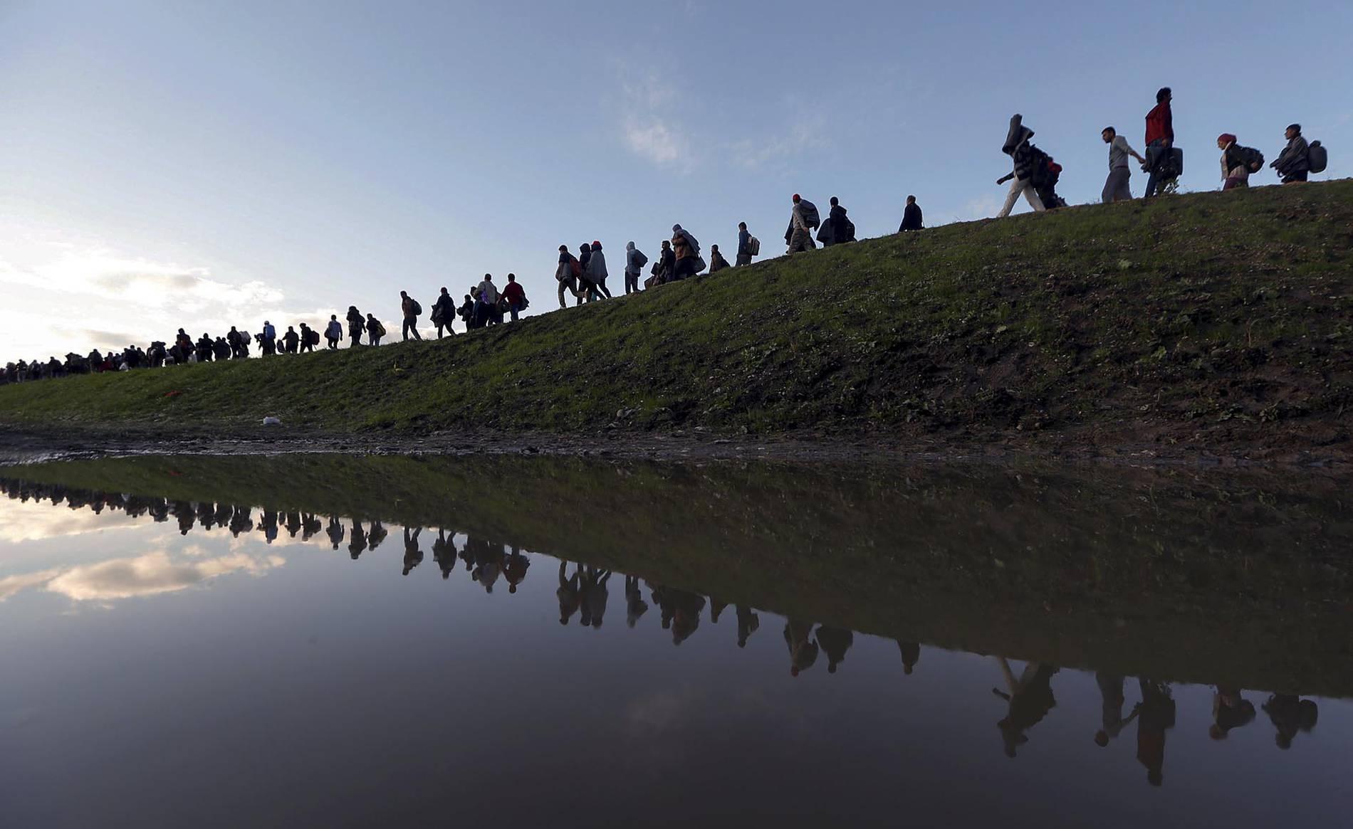En la categoría de fotografía fueron premiadas dos coberturas de la crisis de refugiados en Europa y su tortuoso viaje en busca de asilo, a cargo de The New York Times y la agencia Reuters.