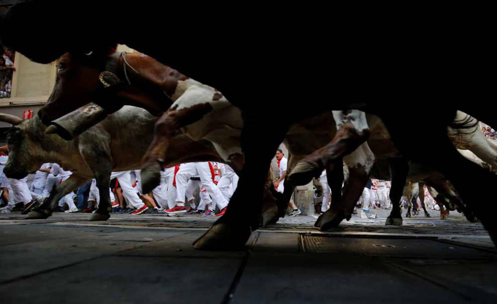 Imágenes del primer encierro de San Fermín 2017 (1/104) - Todas las imágenes del primer encierro de San Fermín 2017 - San Fermín -