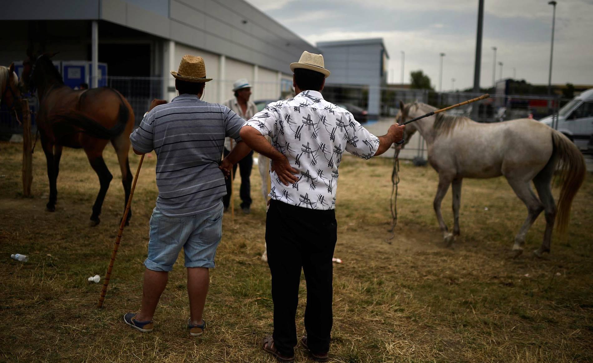 Feria de ganado equino de San Fermín (1/6) - Fotos de la feria de ganado equino que se celebra todos los años el día 7 de julio, San Fermín. - San Fermín -