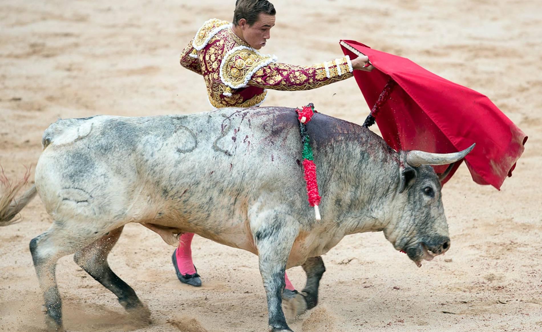 Corrida del día 7 (1/76) - Imágenes de la primera corrida de las fiestas de San Fermín 2017. - San Fermín -