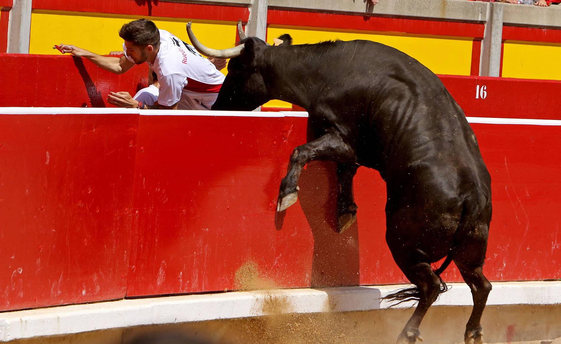 Concurso de recortadores de San Fermín (1/24) - La plaza de toros de Pamplona acogió este domingo 9 de julio el tradicional festejo taurino. - San Fermín -