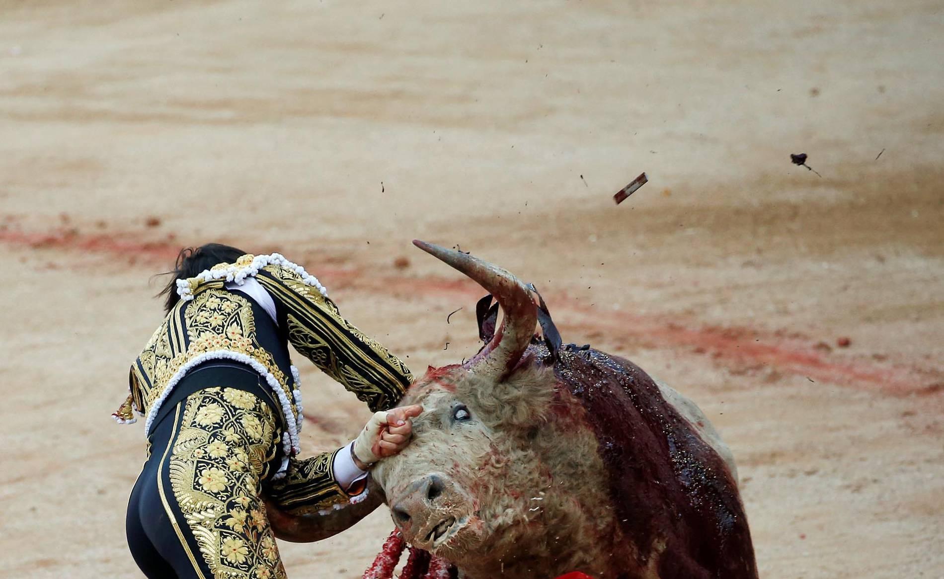 Grave cogida a Roca Rey en Pamplona (1/8) - Cogida a Roca Rey en la ingle al entrar a matar al último toro - Contenidos -