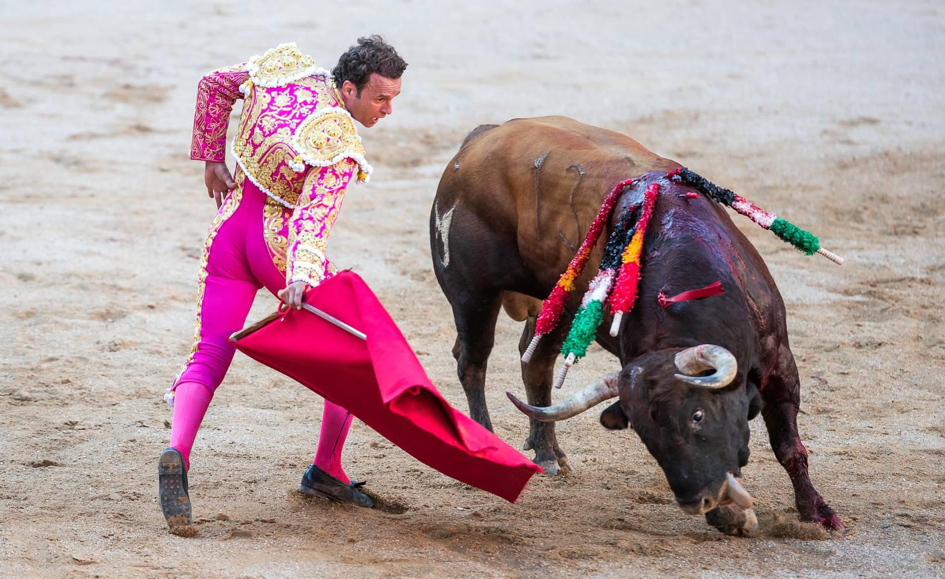 Corrida de toros del día 13 (1/46) - Corrida de toros del día 13 con la ganadería Nuñez del Cuvillo - Contenidos -