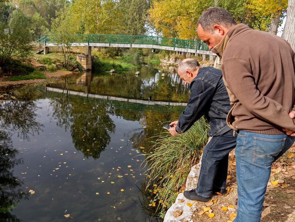 Reciente episodio de contaminación de las aguas del Ega en Valdega