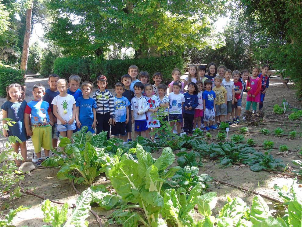 Colegio Virgen del Rosario (Fontellas) (1/12) - Colegio Virgen del Rosario (Fontellas) - Navarra -