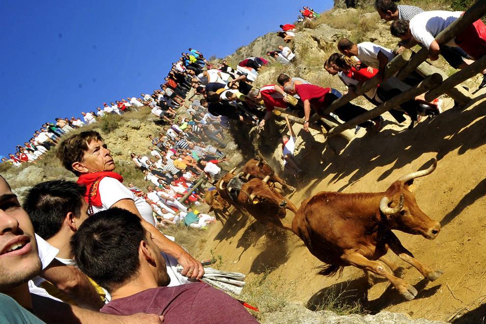Quinto encierro del Pilón en Falces (1/6) - Galería del quinto encierro de fiestas de Falces - Contenidos -