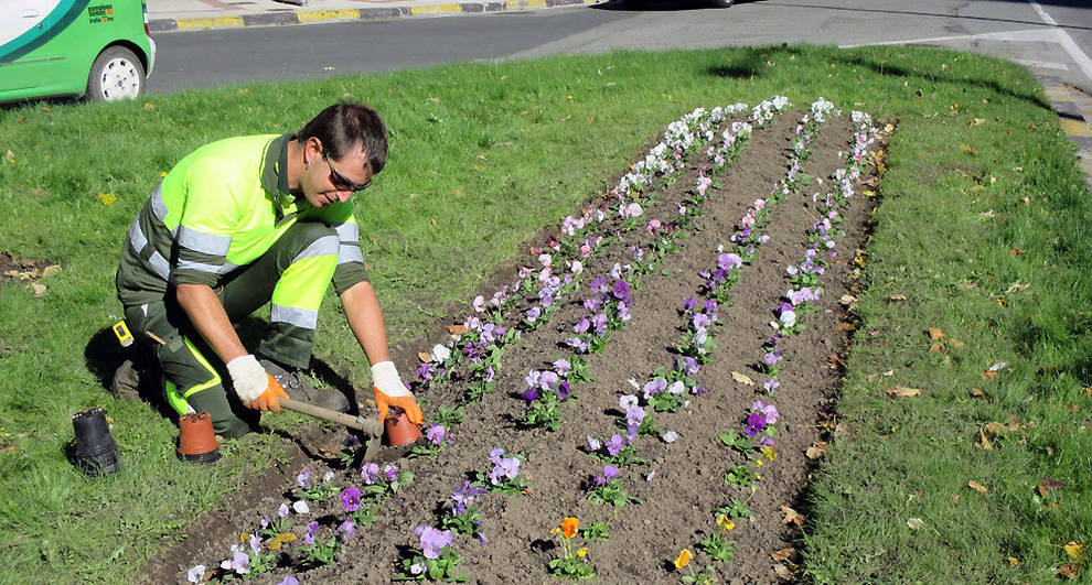 Pamplona quiere plantar flores de \