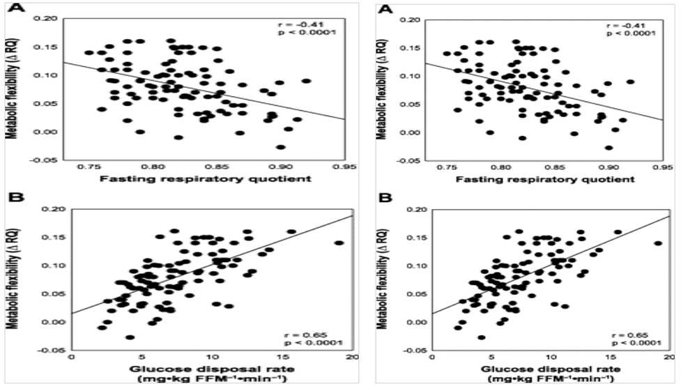 Flexibilidad metabólica 2.0. Manipula tu cociente respiratorio y manipula tus resultados (II)