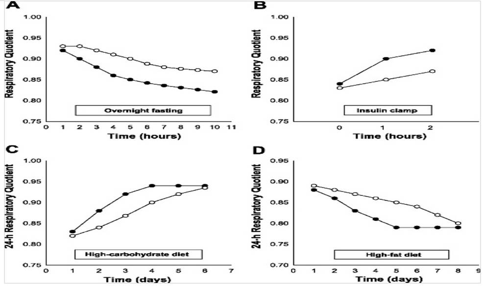 Flexibilidad metabólica 2.0. Manipula tu cociente respiratorio y manipula tus resultados (III)