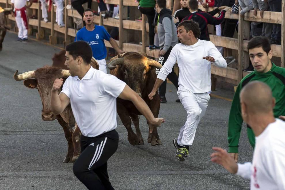 Becerrada popular y encierro en el tercer día de las fiestas de Sangüesa (1/17) - Los jóvenes de Sangüesa se reunieron para comer disfrazados e ir a la plaza de toros - Sangüesa y Merindad -