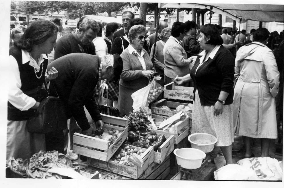 La menestra del mercado de Estella