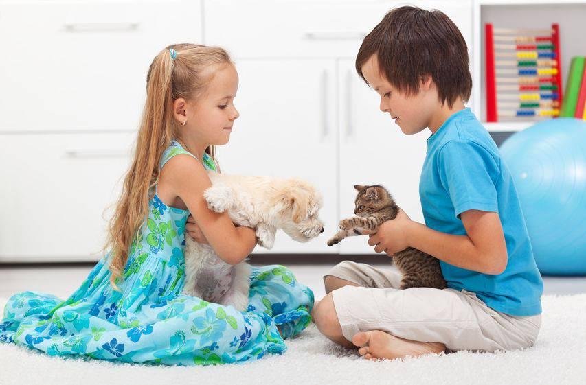 niños mascotas seguros