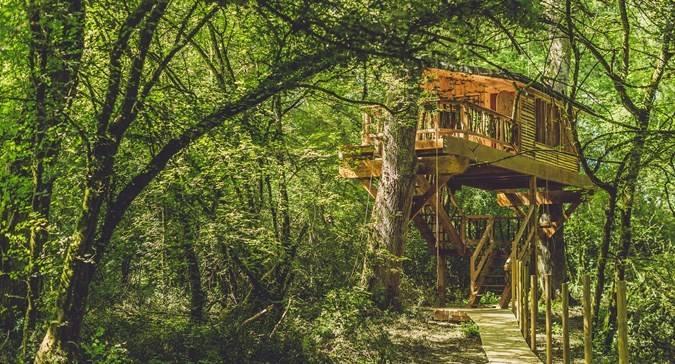 Cabañas En árboles En Navarra Vivir En Las Alturas Noticias De Conocer Navarra En Diario De Navarra