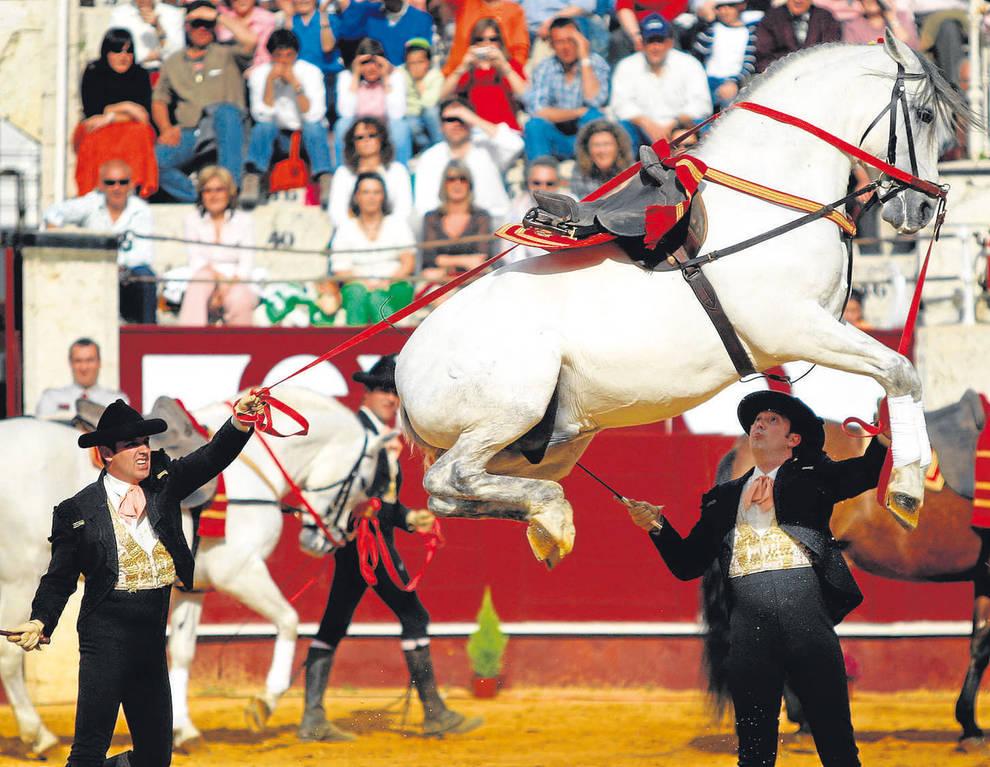 Espectáculo de la Real Escuela Andaluza de Arte Ecuestre.