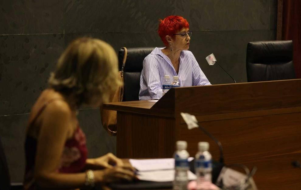 La consejera de salud, Santos Induráin, este martes en la comisión de Salud.