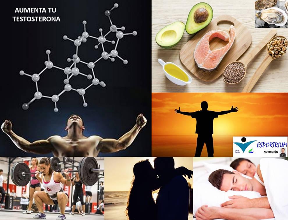 Testosterona, hormona clave en el rendimiento