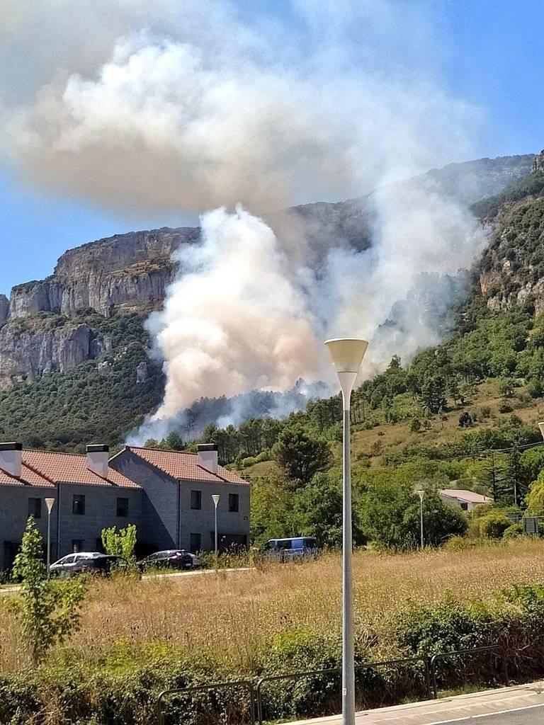 Estabilizado un incendio en Etxauri  que ha quemado una pequeña extensión de arbolado