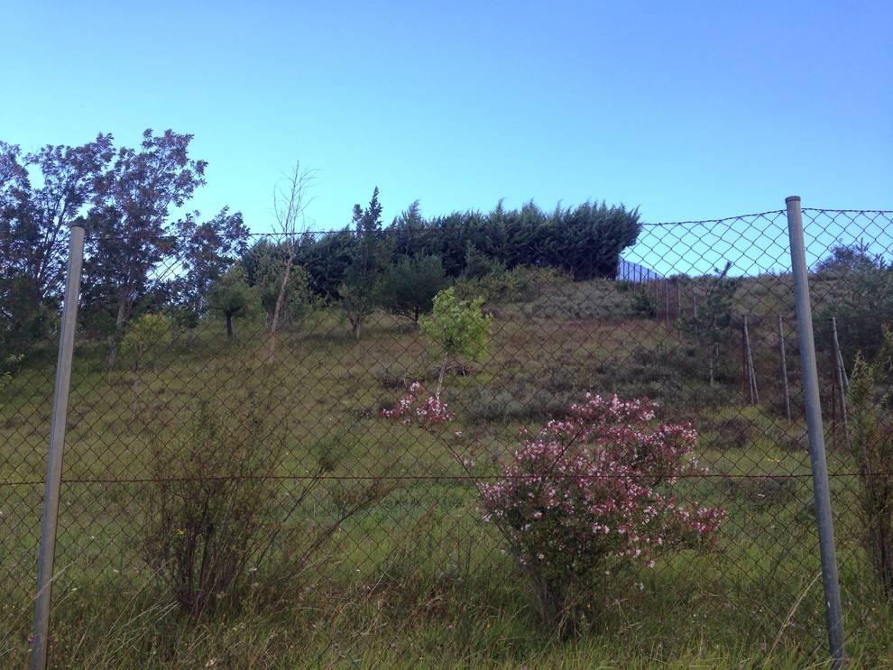 LABIANO: Paz y aire fresco cerca de la ciudad