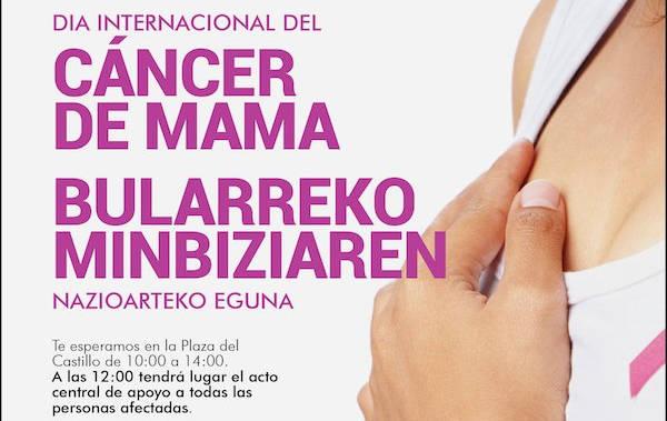 Cartel de la celebración del Día Internacional contra el cáncer de mama en Pamplona.