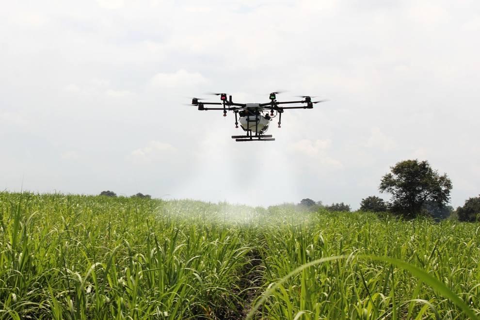 Los drones pueden ser usados para aplicación de productos fitosanitarios, ecológicos y cualquier otra necesidad del agricultor.