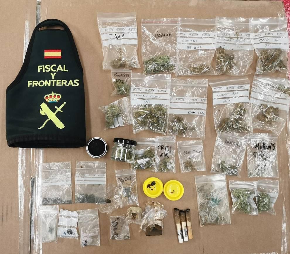 Investigados dos propietarios de una tienda con productos para el cultivo de marihuana