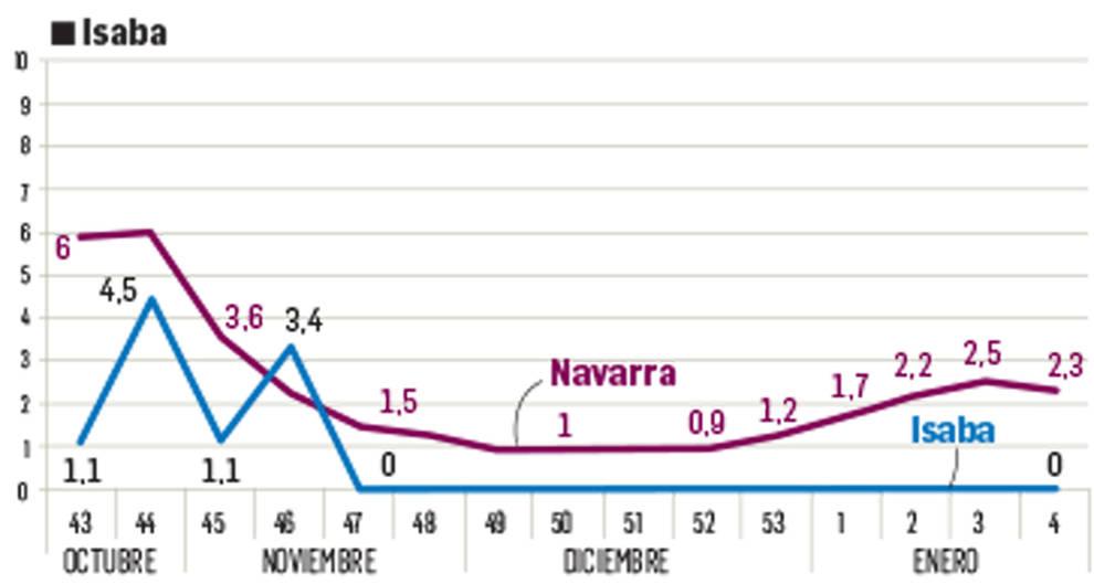Las zonas de Burguete, Sangüesa y Salazar marcan picos de covid en enero