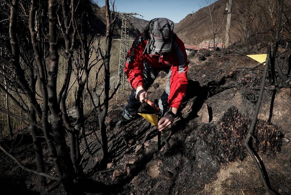 Abiertas todas las líneas de investigación en el origen del incendio de Bera
