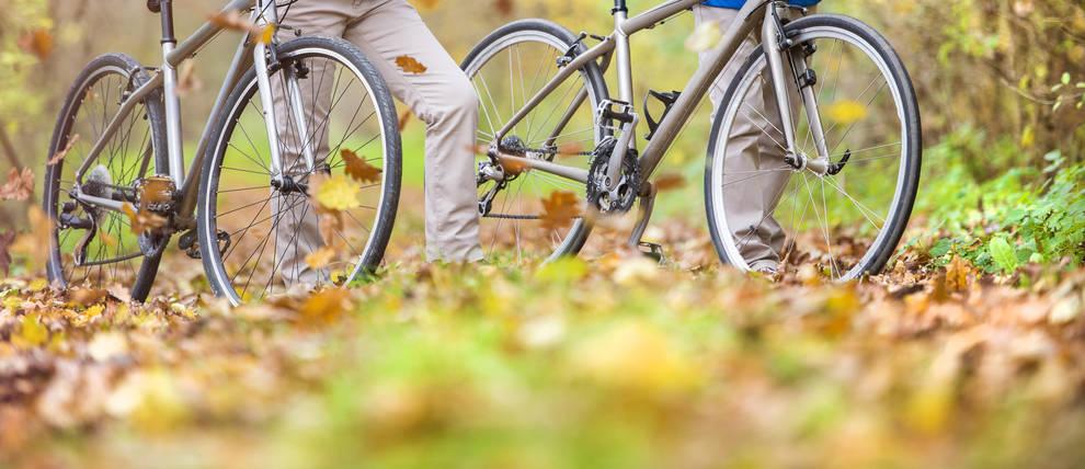 Imagen de dos personas en bici en plena naturaleza
