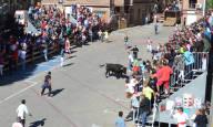 Toro con soga en Lodosa
