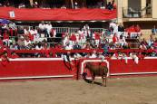 Día de las mujeres en las fiestas de Villafranca