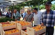 Imágenes de la VII Feria del Melocotón de Sartaguda