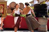 Fotos de la Fiesta de la Vendimia en Olite