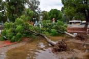 Imágenes del ciclón 'Zorbas' de Grecia