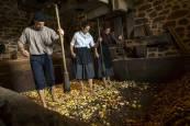 Arizkun revive la elaboración de la sidra con la Kirikoketa