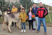 Cierre de fiestas con una carrera de burros
