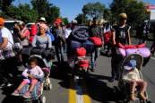 'Diario de Navarra' y la ONG Alboan acompañan en México a los miles de emigrantes centroamericanos
