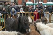 Ferias de San Andrés. 1 de diciembre