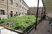 Visitas guiadas al antiguo Convento de las Salesas