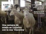 El Diario DN+: El aumento de la plantilla en la Administración foral