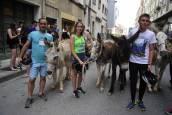 Undécima carrera sobre burros de Tafalla