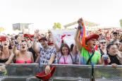 Festival Holika de Cortes