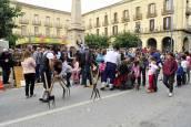 Ferias de otoño de Tafalla 2019 | Domingo