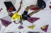 Campeonato de España de Escalada y Paraescalada - Sábado 2 de noviembre