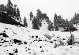 La nieve llega a Navarra