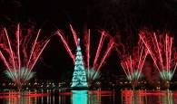 Río enciende el árbol de Navidad flotante más grande del mundo