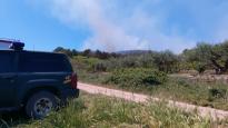 Fotos del incendio forestal en Los Arcos
