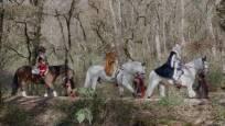 Los Reyes Magos, de camino a Pamplona