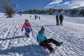 Fotos de las nevadas en Tierra Estella
