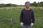 Una granja de patos en el valle de Guesálaz sufre el ataque de los buitres